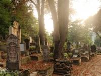 grave_yard_sighisoara_romania