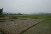 Cycling along rice patties on the Ho Chi Minh Trail