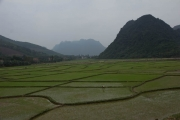 Cycling along the rice fields to Phong Nha
