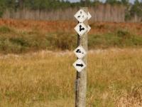conner_preserve_path_marker