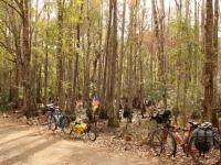 starkey_park_bike_path_comotion