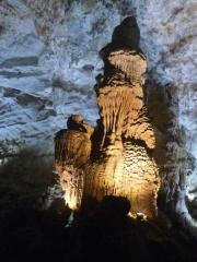 Phong Nha Cave13