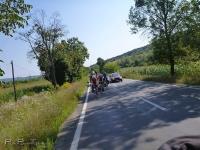 bicycle_touring_romania_horse