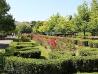 central_park_brasov_romania