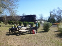 picnic_spot