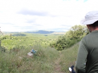 mountainview_grass_path