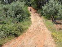 ron_pushing_muddy_road