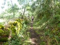 petra_narrow_path