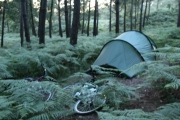 wildcamp_france_1