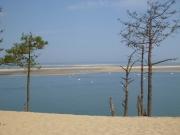 dune_boats