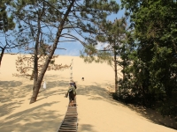 ron_stairs_dune