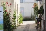 talmont_bike