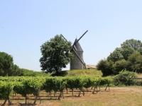 wind_mill