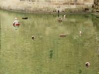 castle_moat