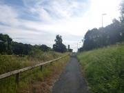bike_path-jpg