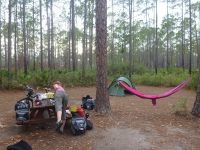 Cary State Forest
