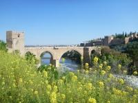 toledo_san_martin_bridge