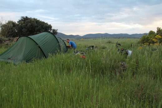 Wild Camp II - Spain