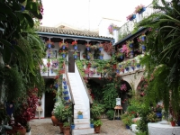 flower_patios