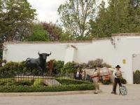 spanish_horse_bull_ring