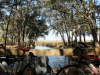 jekyll_island_bikes_pangea