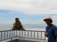 ron_monkey_rail