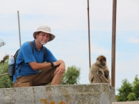 ron_monkey_sitting-copy