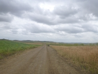 more_farmland