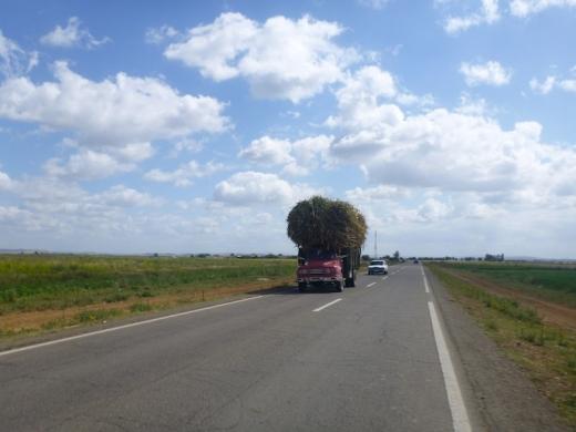 hay_truck