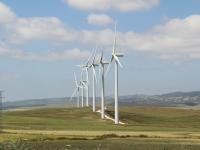 wind_mill_row