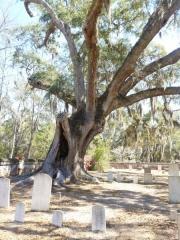midway_graveyard