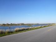 savannah_wildlife_preserve