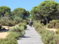 ron_spain_bike_path_beach_1