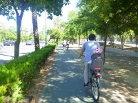 spain_seville_cyclist