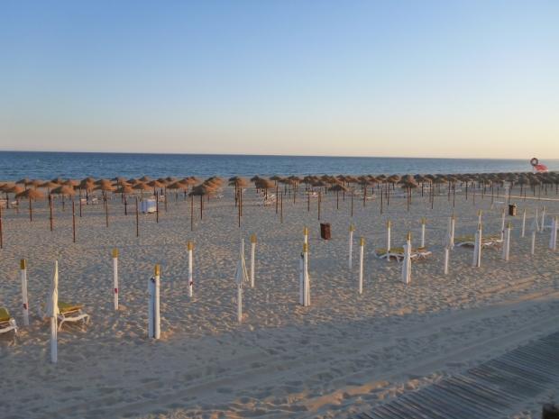 empty_beach_umbrellas