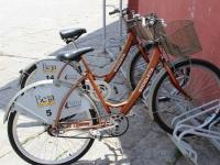 beja_petra_rental_bikes