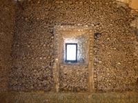 bones_window