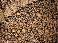 chapel_bones_closeup
