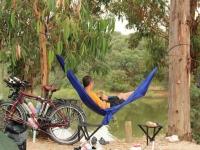 avis_campsite_ron