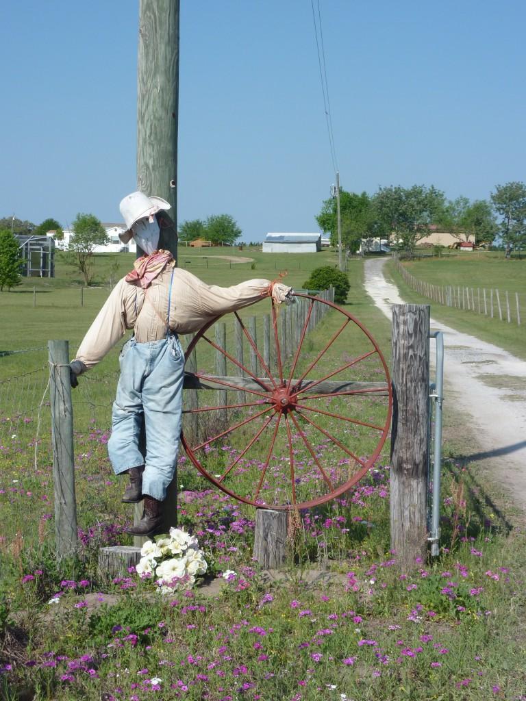 bicycling Florida, Scarecrow